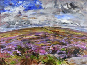 Purple moor